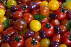 Rustic Heirloom Cherry Tomato Salad with Basil and Olives Royalty Free Stock Images