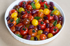 Rustic Heirloom Cherry Tomato Salad with Basil and Olives Royalty Free Stock Photo
