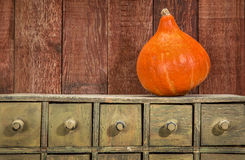 Rustic holiday background with squash Royalty Free Stock Image