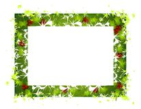 Rustic Holly Leaves Christmas Frame 2 Royalty Free Stock Image