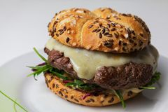 Rustic home made cheesburger with melting cheese and with dijonn. Aise sauce on white table on white background Stock Image
