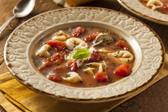 Rustic Homemade Tortellini Soup Stock Images