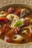 Rustic Homemade Tortellini Soup Stock Photos