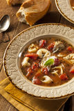 Rustic Homemade Tortellini Soup Stock Image