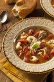 Rustic Homemade Tortellini Soup Stock Image