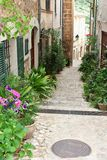 Rustic alleyway with flowerpots in Fornalutx, Majorca, Spain Stock Image