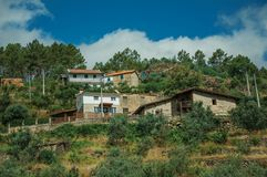 Rustic houses on hill with terraced olive trees royalty free stock photo