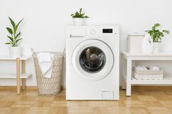 Free Rustic Interior Of Home Laundry Room With Modern Washing Machine Royalty Free Stock Photo - 183636435