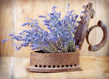 Rustic iron (old iron) and dry lavender Stock Images