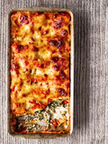Rustic italian baked spinach ricotta cannelloni pasta Royalty Free Stock Photo