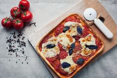 Rustic italian pizza with mozzarella, cheese and basil leaves. Vegetarian food stock photography