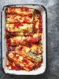 Rustic italian spinach ricotta cannelloni pasta Stock Images