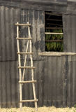 Rustic Ladder Royalty Free Stock Image