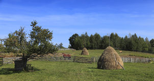 Rustic landscape Royalty Free Stock Photo