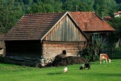 Rustic landscape Stock Photo
