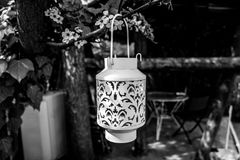 Rustic lantern. White lantern/headlamp hanging from a plum tree. There`s a pergola in the background Stock Images