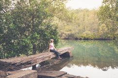 Rustic large hewn timber jetty in Australian bushland Royalty Free Stock Image