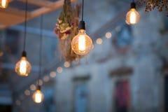 Rustic light bulb garden lights
