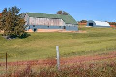 Rustic Barn with Green Roof and Blue Outbuilding stock image