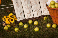 Rustic Love Sign with Apples Stock Photography