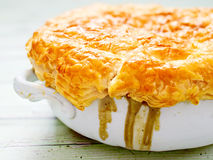 Rustic meat potpie Royalty Free Stock Images
