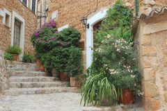 Rustic Mediterranean village Fornalutx, Mallorca, Spain. Rustic street with plants and flowers  in the little Mediterranean village Fornalutx in the Tramuntana Stock Image