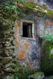 Rustic mossy house Stock Image