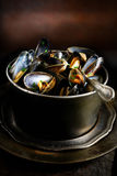 Rustic Mussels Stock Image