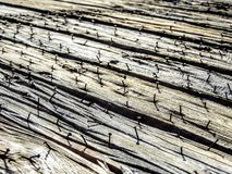 Rustic nails in boards Stock Photography