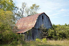 Rustic old barn in Fall season Royalty Free Stock Photo