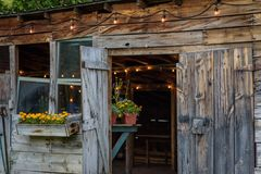 Rustic old potting shed with edison lights. Rustic old barn wood potting shed with edison lights Royalty Free Stock Photo
