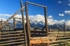 Rustic old corral. Stock Image