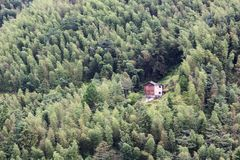 Rustic old house surrounded by forest. Royalty Free Stock Photography