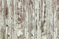 Rustic old white wood plank background Royalty Free Stock Photography