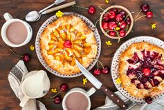 Rustic open pies with apricots and raspberry french galettes Stock Photography