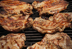 Rustic outdoor  grill time Stock Photography