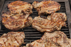 Rustic outdoor  grill time Royalty Free Stock Images