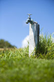 Rustic outdoor water spigot in grass field in California Royalty Free Stock Photography