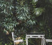 Rustic outdoors furniture in backyard garden Royalty Free Stock Photos