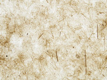 Rustic paper texture. With fibers Stock Images
