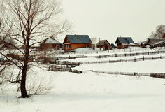 Rustic pictures. Early springtime comes alive life in siberian village royalty free stock image