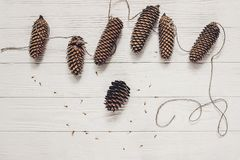 Rustic pine cone handmade garland on white wooden background top Royalty Free Stock Images