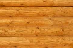 Rustic Pine Log Cabin Wall Royalty Free Stock Photography