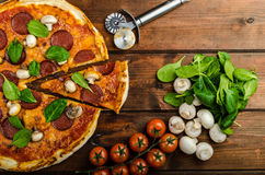 Rustic pizza with salami, mozzarella and spinach. On a clay plate stock photography