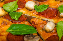 Rustic pizza with salami, mozzarella and spinach stock photography