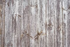 Rustic plank fence brown old bark wood textured photo. Abstract background Image. Tonid. Copy space. Rustic plank fence brown old bark wood textured photo royalty free stock images