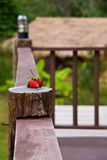 Rustic porch Stock Image