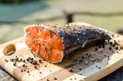 Rustic prepared peace of fresh salmon fish with salt and pepper Royalty Free Stock Photos