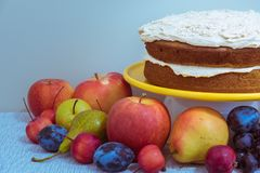 Rustic pumpkin spice cake layers on tabletop display with autumn fruit. Layers of vegan pumpkin spice cake with vegan buttercream frosting on tabletop display royalty free stock photo