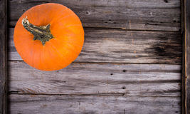 Rustic pumpkin on wood Royalty Free Stock Photo